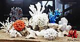 Композиция К60 для аквариума с кораллами (от 180л), фото 2