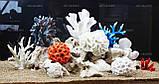 Композиция К60 для аквариума с кораллами (от 180л), фото 3