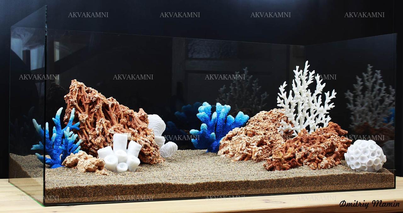 Композиція з Spaghetti і коралів K62 (від 160л)