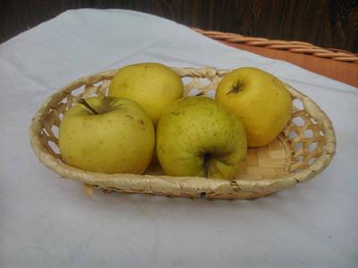Конфетницы и фруктовницы