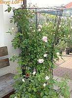 Кольцевая опора для растений 170х100см. Кольцевая опора для роз. Кольцевая стойка для роз. Опора для клематиса