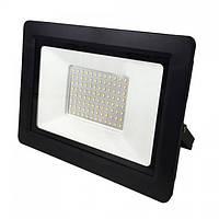 Прожектор світлодіодний Horoz Electric ASLAN-100 LED 100Вт 8000Лм 6400К холодне світло (068-010-0100)