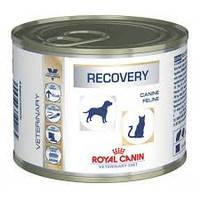 Royal Canin Recovery 195g восстановительный период после болезни. 195гр 12шт