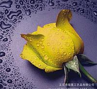 """Алмазная вышивка """"Роза желтая"""""""
