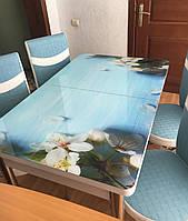 """Розкладний обідній кухонний комплект стіл і стільці з 3D малюнком """"Цвітіння пелюстки"""" ДСП скло 70*110 Лотос-М 3д"""