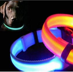 Светящийся ошейник Fox LED для собак , узкий с нейлона 0.5 м Размер L (48-60см) цвет-синий.