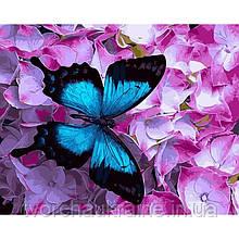 GX21627 Бабочка на цветах. Brushme. Картина по номерам