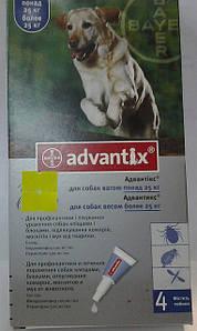 АДВАНТИКС для собак весом 25 - 40кг(1упаковка/4 пипетки)