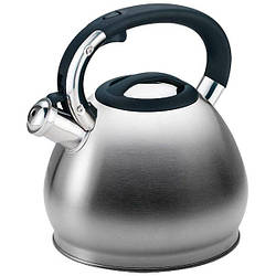 Чайник зі свистком з нержавіючої сталі Maestro MR-1319 (4.3 л)   металевий чайник Маестро, Маестро