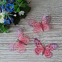 Бабочки из шифона. Красно белая с  глиттерным брюшком 6 на 4 см