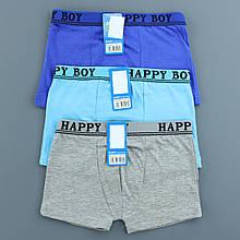Труси для хлопчика Happyboy однотонні, трусики боксерки для хлопчика від 5-13 років СХ8237