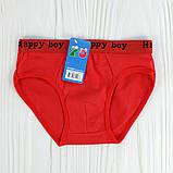 Труси для хлопчиків Happy boy S-XL, фото 6