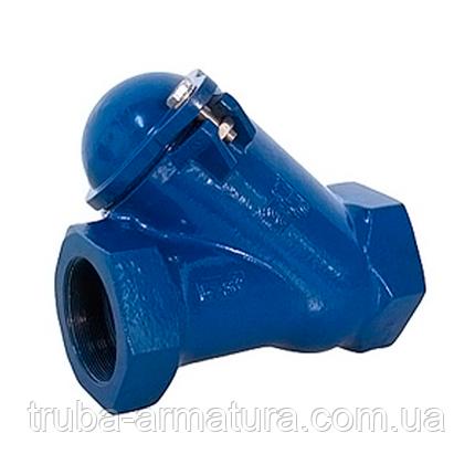 Клапан зворотний каналізаційний чавунний муфтовий TIS DN 65 PN 10, фото 2