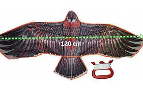 Динамический отпугиватель птиц Крук, Феникс