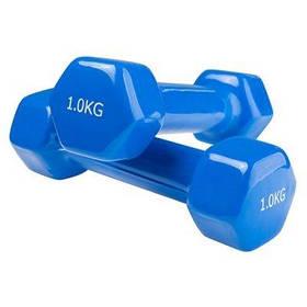 Гантели для фитнеса World Sport 1кг х 2 шт синие SKL11-291751