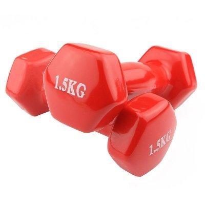 Гантели для фитнеса World Sport 1.5кг х 2 шт красные SKL11-291753