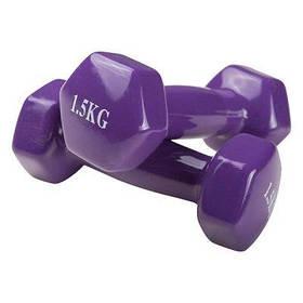 Гантели для фитнеса World Sport 1.5кг х 2 шт фиолетовые SKL11-291754