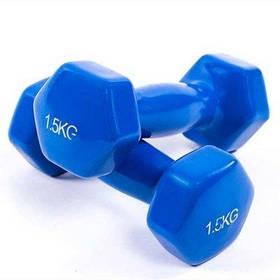 Гантели для фитнеса World Sport 1.5кг х 2 шт синие SKL11-291757
