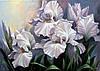 Красивая картина цветы Ирисы