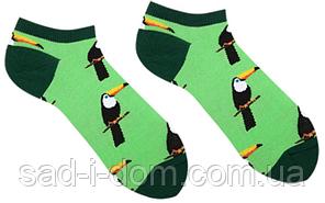 Носки короткие Sammy Icon Rio Short 36-40 Green