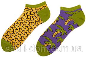 Носки короткие Sammy Icon Vai Bay Short 36-40 Multicolor