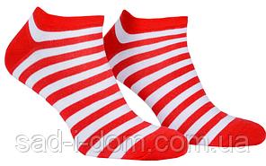 Носки Mushka Cherry mini SWRM01 36-40 Red/White