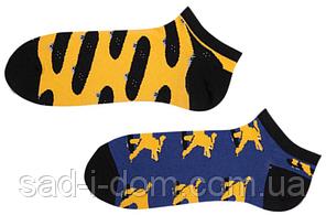 Носки короткие Sammy Icon Mullen Short 36-40 Blue/Yellow