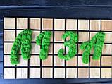 Логотип из мха, фото 2