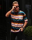 Мужская футболка в полоску WE, фото 5