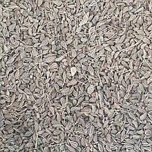 Аніс звичайний (плоди) 50 гр (Свіжий урожай)