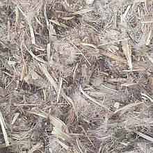 Артишок справжній (трава) 50 гр (Свіжий урожай)