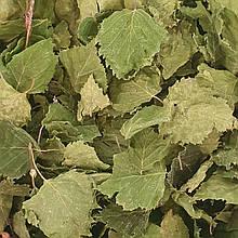 Береза лист 50 гр (Свіжий урожай)