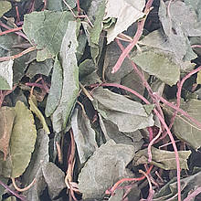 Борова матка (трава) 50 гр (Свіжий урожай)