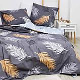 Полуторное постельное белье Вилюта 21144 ранфорс, фото 3