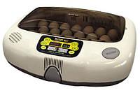 Домашний Инкубатор Rcom 20 MAX (20 шт)