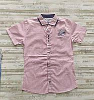 """Сорочка підліткова з коротким рукавом на хлопчика 134-170 см (3 цв) """"MATILDA"""" купити оптом в Одесі на 7км"""