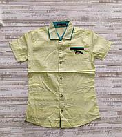 """Сорочка підліткова з коротким рукавом на хлопчика 134-170 см (2 цв) """"MATILDA"""" купити оптом в Одесі на 7км"""