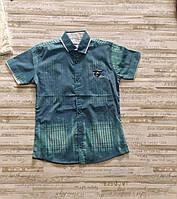 """Сорочка підліткова з коротким рукавом на хлопчика 134-170 см """"MATILDA"""" купити оптом в Одесі на 7км"""