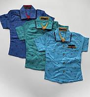 """Сорочка дитяча літня з принтом на хлопчика 1-4 роки (3ол) """"MATILDA"""" купити недорого від прямого постачальника"""