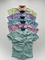 """Сорочка дитяча літня з принтом на хлопчика 1-4 роки (5кол) """"MATILDA"""" купити недорого від прямого постачальника"""