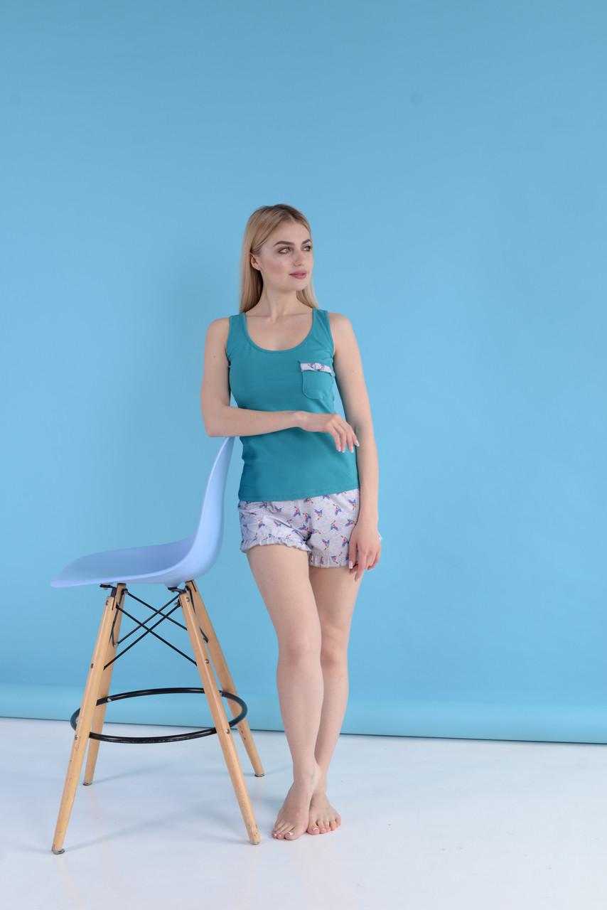 Комплект шорты с майкой ТМ Antana мод 78 Колибри