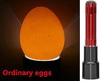 Фонарик для проверки просветки яиц для инкубации LKK-074 красный