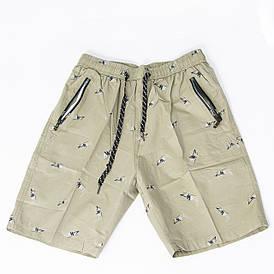 Мужские котоновые шорты до колен (арт. 23-9656) XL, Серый