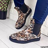 Женские ботинки демисезонные литые, леопардовые из резины, фото 4