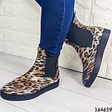 Женские ботинки демисезонные литые, леопардовые из резины, фото 6