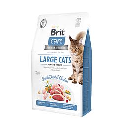 Корм Brit Care Cat GF Large cats Power & Vitality для котів великих порід 2 кг