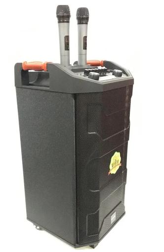Портативная акустика с двумя микрофонами ZXX-6666 FM/USB/BT