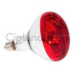 Лампа инфракрасная R125 100 Вт красн. окраш. UFARM