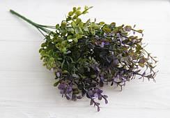 """Зелень """" Эвкалипт, мелкие листья   """"   зеленый с фиолетовым"""