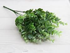 """Зелень """" Эвкалипт, крупные  листья   """"   светло зеленый"""